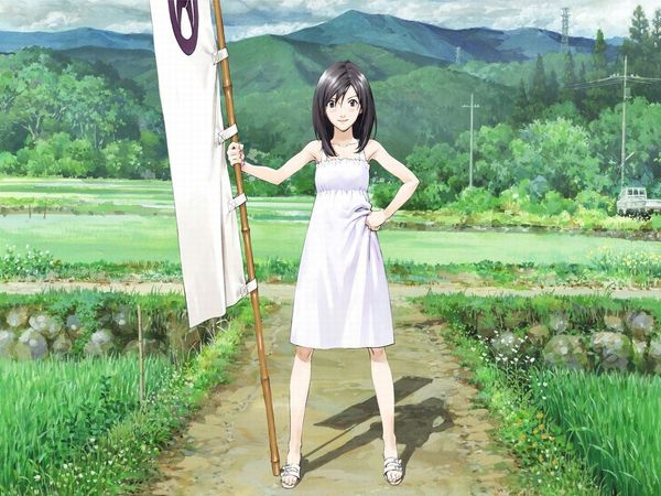Artikel Bild - Summer Wars
