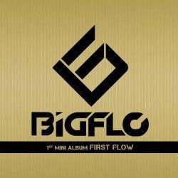 © BIGFLO, HO Company